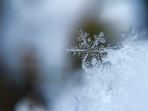 A snowflake with blurred background by Aaron Burden